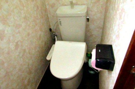 「ビュー」のトイレ