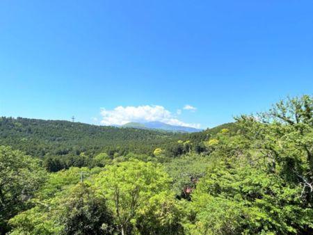 2階寝室左側7.5畳