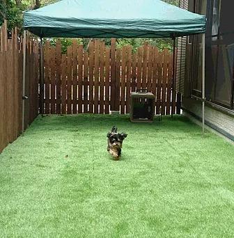 小型犬にも最適なドッグランスペース