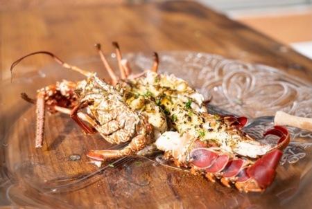 ゆいゆいから見られる星空