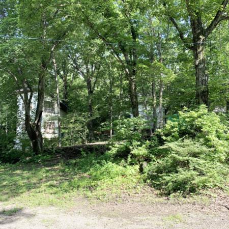 ツインキャビンの広大な庭(350坪)