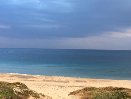 目の前の美しい海