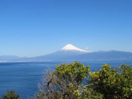 海の向こうには雄大な富士山