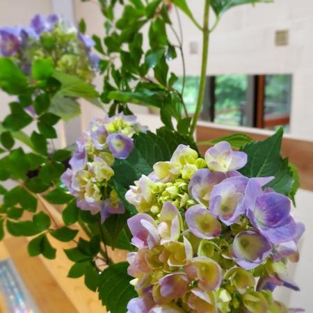 ご朝食用パン