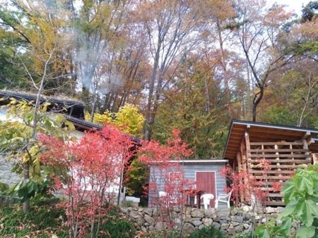 山里の紅葉は通常10月中旬から