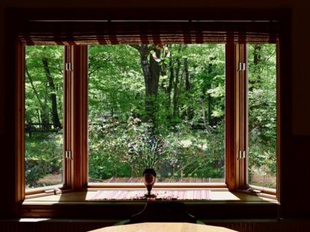 窓からは美しい緑の眺め