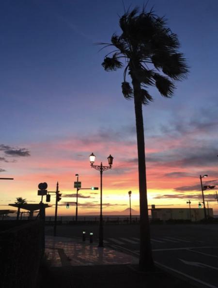 夕陽海岸 歩いて直ぐです。