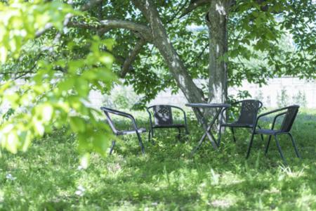 庭の樹の下でゆっくりとお過ごしください