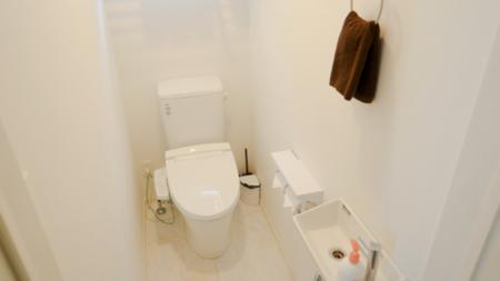 真っ白なトイレは自慢です
