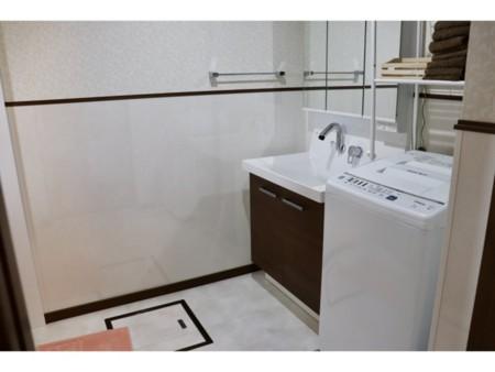 洗面所、洗濯機(乾燥機は室外あり)