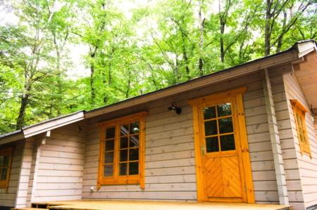北軽井沢で森の小さな小屋暮らし