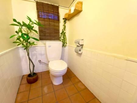 トイレはオールドタイプです!