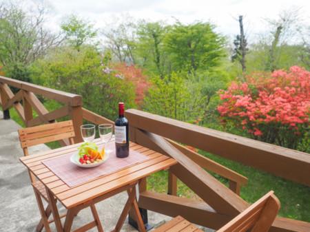 春先には庭のつつじを見ながらワイン。